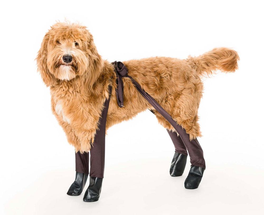 Nooit meer natte hondenpootjes dankzij deze leggings met laarsjes (foto)